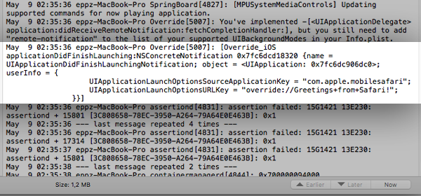 iOS Simulator System Log applicationDidFinishLaunching